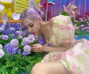icecream, rose, and jennie image