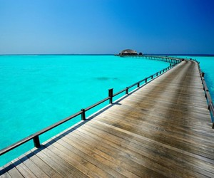 Maldives and beach image