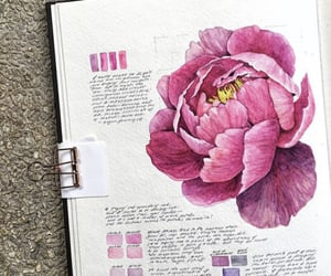 drawing, flower, and art image