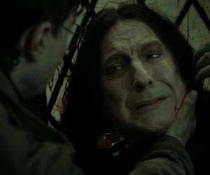 harry potter, hp headers, and deathly hallows image