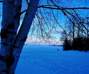 blue, winter, and snow image