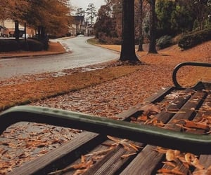 autumn, bench, and change image