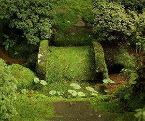 garden, green, and japan image