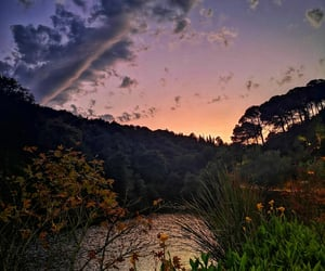 amazing, pond, and sunset image