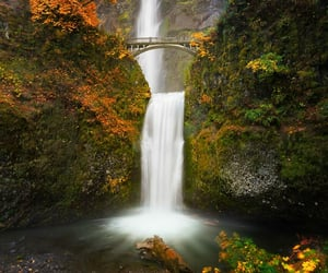autumn, beautiful, and waterfall image
