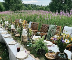 events, feild, and pretty image