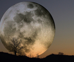 moon, night, and nature image