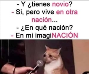 crush, frases, and memes image