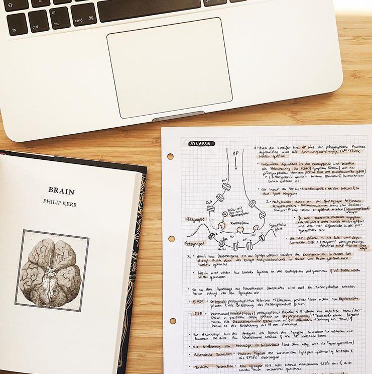 apple, medicine, and organisation image