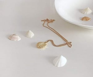accessories, beige, and palette image