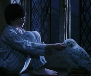 harry potter, hogwarts, and movie image