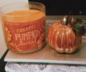 autumn, fall, and november image