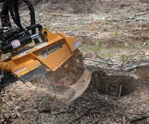 stump removal service image