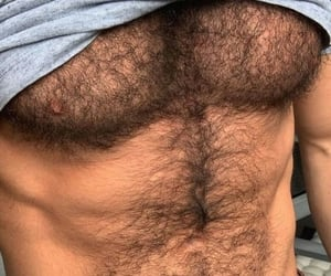 chest, sexy, and hairy image