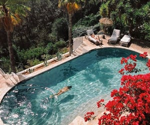 pool, view, and nature image