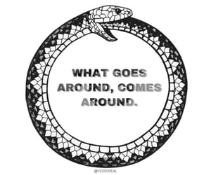 black and white, circle, and snakes image