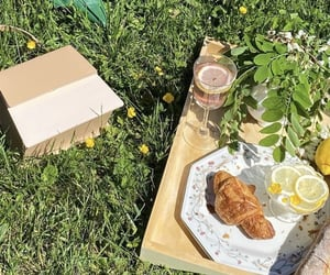 bread, picnic, and paris image