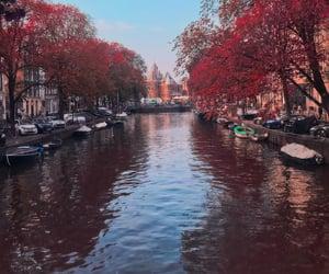 amsterdam, beautiful, and fall image