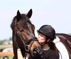 life, mylife, and horse image