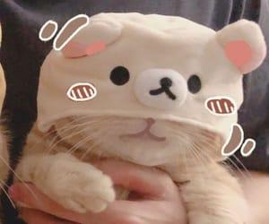 matching icon, matching cat pfp, and matching pfp image