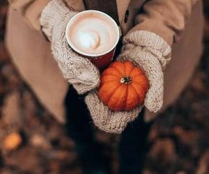 pumpkin, autumn, and coffee image