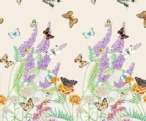 background, flores, and mariposa image