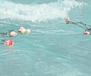 rose, flowers, and ocean image