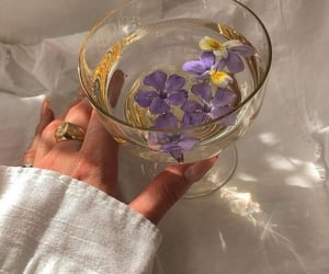 flowers, aesthetic, and drink image