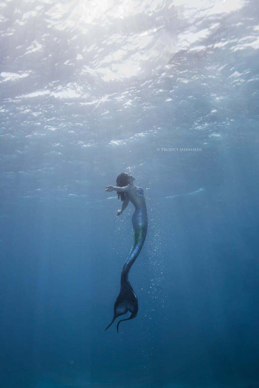 article and mako mermaids image