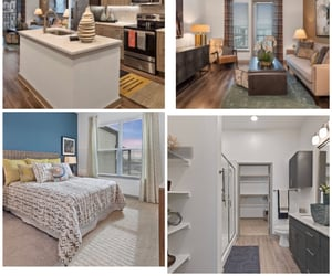 apartments, Dallas, and roommates image