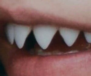 mouth, shark, and teeth image