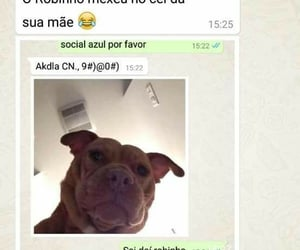 br, cachorro, and memes image
