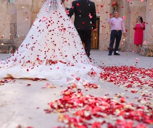 2020, girl, and wedding image