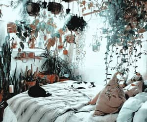 cat, bedroom, and plants image