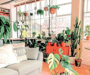 theme, background, and plants image