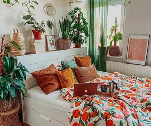 bedroom, colorful, and plants image
