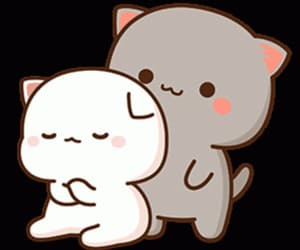 amour, bear, and kawaii image