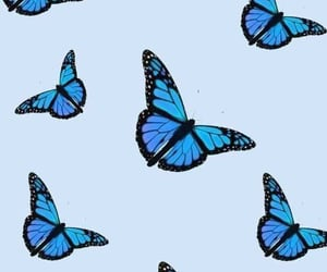 aesthetic, blue, and blue butterflies image