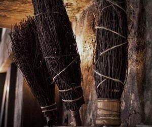 harry potter, broomstick, and autumn image