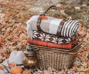 autumn, fall, and picnic image
