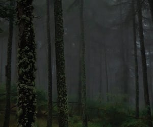 aesthetics, creepy, and foggy image
