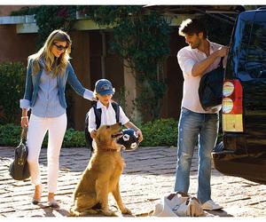 dog, family, and fashion image