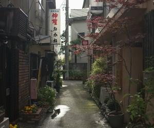 japan, theme, and street image