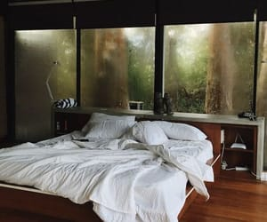 bed, bedroom, and forest image