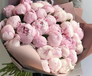 Peonies are so beautiful 🌷💐  {cred. Pinterest}