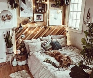bedroom, dog, and plants image