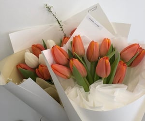 flowers, bouquet, and cute image
