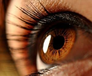 aesthetic, eyes, and random image