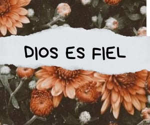 amor, dios, and fidelidad image