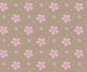 background, brown, and flowers image